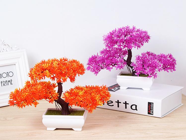 Tanaman Hias Bunga Sakura Asli Import Gb 959 Grosiran Batam