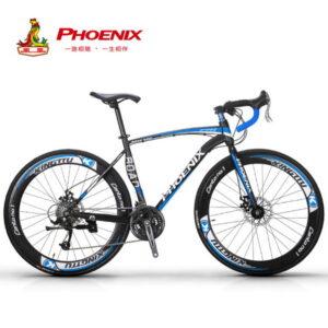 Sepeda Gunung 27 Speed Euro Bike Asli Impor